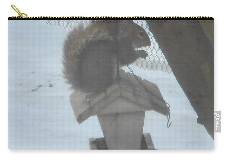 Squirrel Carry-all Pouch featuring the photograph Squirrel Chilling Out by Darlene Custer