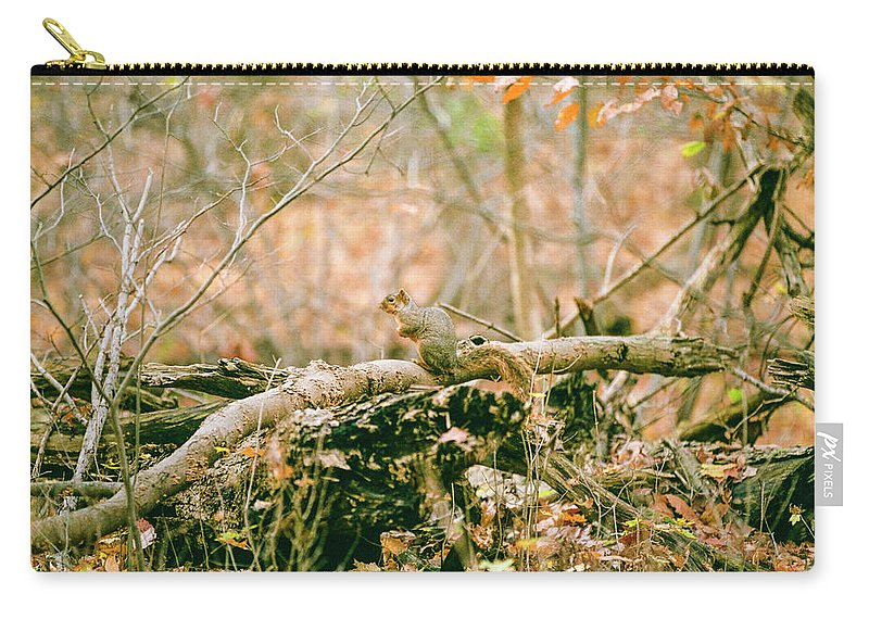 35mm Film Carry-all Pouch featuring the photograph Squirrel In The Woods by John McGraw