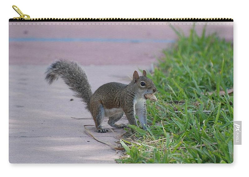 Squirrels Carry-all Pouch featuring the photograph Squirrel Nuts by Rob Hans