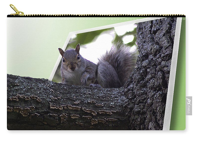2d Carry-all Pouch featuring the photograph Squirrel On A Limb by Brian Wallace