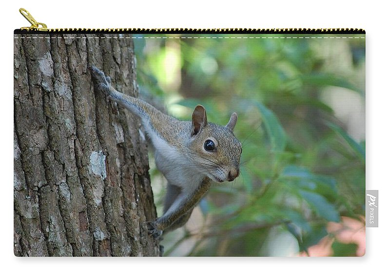 Squirrel Carry-all Pouch featuring the photograph Squirrel by Robert Meanor