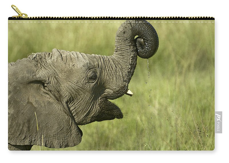 Africa Carry-all Pouch featuring the photograph Squirting Water by Michele Burgess