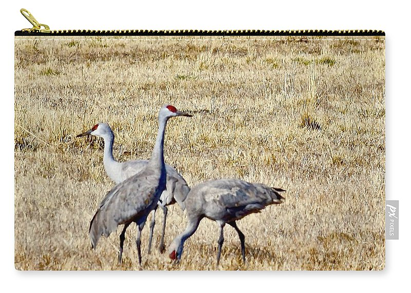 Birds Carry-all Pouch featuring the photograph Sand Hill Cranes by Hella Buchheim