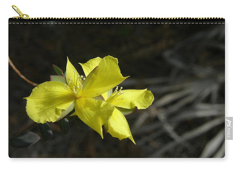 Flower Carry-all Pouch featuring the photograph St. John by Kimberly Mohlenhoff