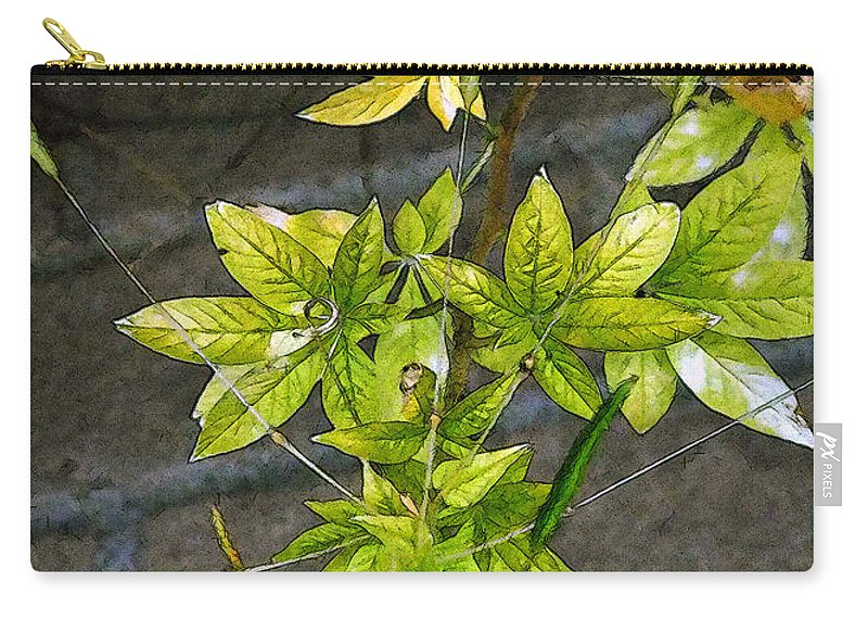 Autumn Carry-all Pouch featuring the painting Stalk With Seed Pods by RC DeWinter