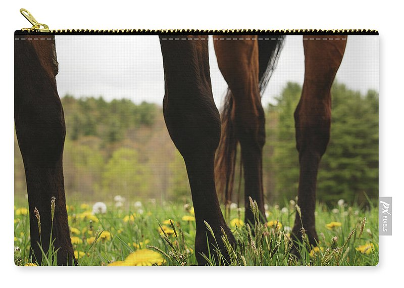 Horses Carry-all Pouch featuring the photograph Stand by H Roberts Photography