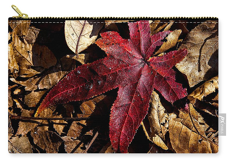 Flora Carry-all Pouch featuring the photograph Stand Out In The Crowd by Christopher Holmes