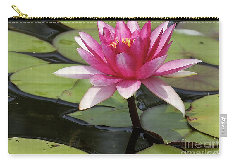 Waterlilly Carry-all Pouch featuring the photograph Standing Tall In The Pond by Deborah Benoit