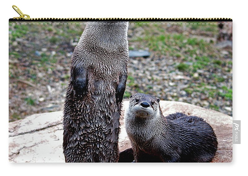 Otters Carry-all Pouch featuring the photograph Standing Tall by Lori Tambakis