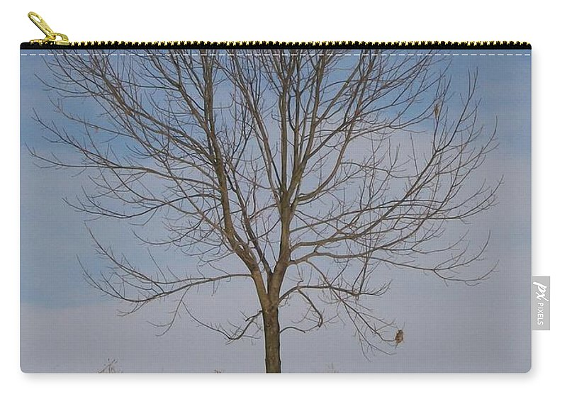 Tree Carry-all Pouch featuring the photograph Standing Tall by Sara Raber
