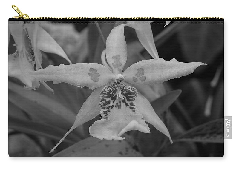 Macro Carry-all Pouch featuring the photograph Star Flower by Rob Hans