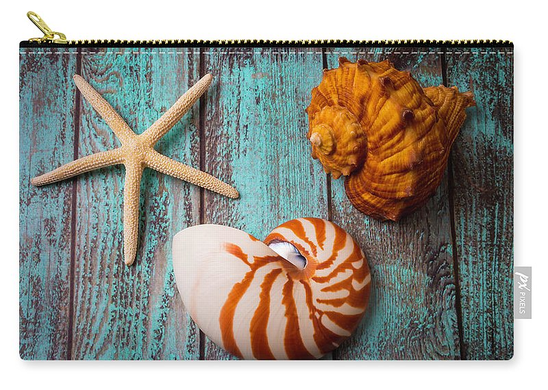 Starfish Carry-all Pouch featuring the photograph Star Shell Still Life by Garry Gay