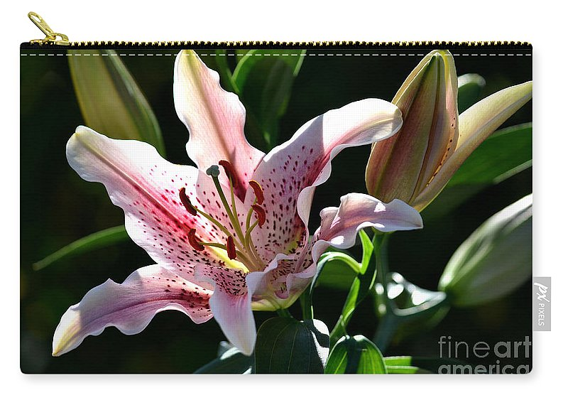Stargazer Lily Carry-all Pouch featuring the photograph Stardom by Deb Halloran