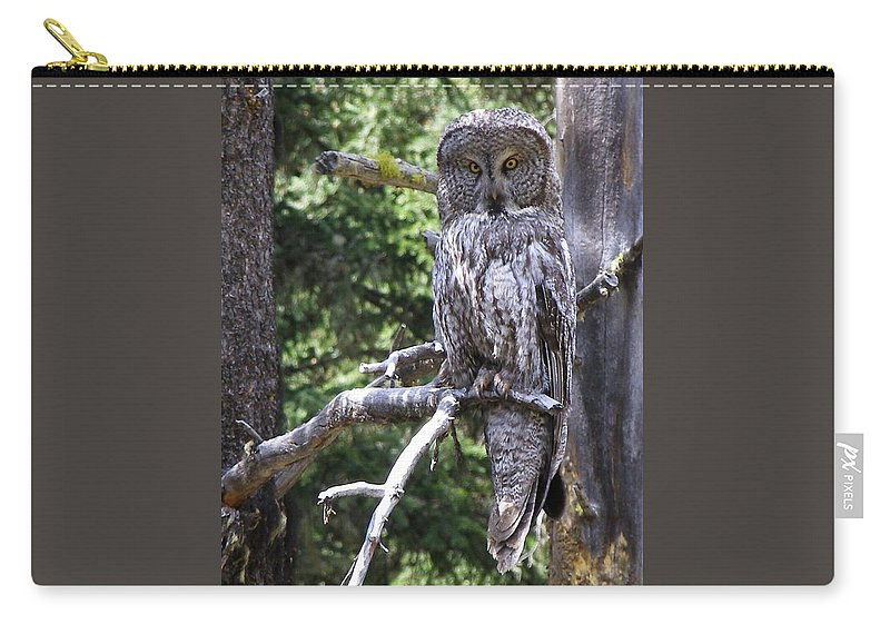 Bird Carry-all Pouch featuring the photograph Stare Down by DeeLon Merritt