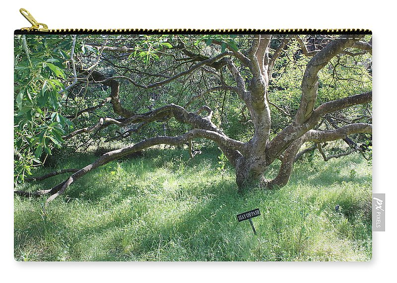 Tree Carry-all Pouch featuring the photograph Stay On Path by Carol Groenen