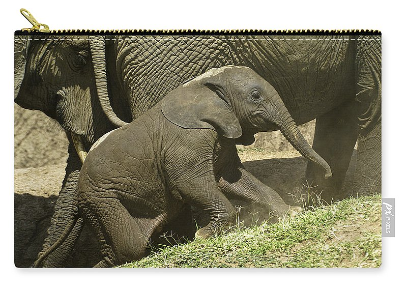 Africa Carry-all Pouch featuring the photograph Steep Climb For A Little Guy by Michele Burgess