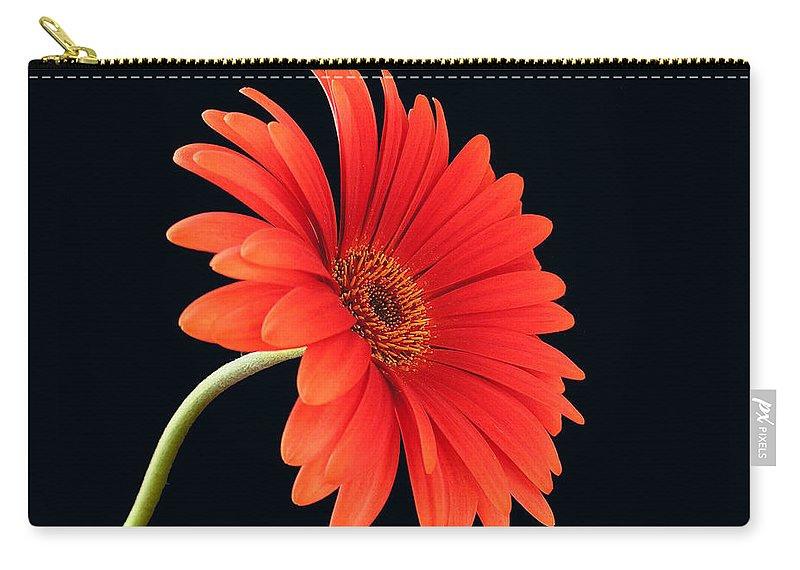 Flower Carry-all Pouch featuring the photograph Stemming Beauty by Carol Milisen