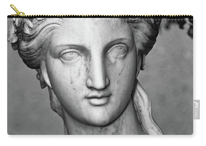 Sculpture Carry-all Pouch featuring the photograph Stone Cold Beauty by Christopher Holmes