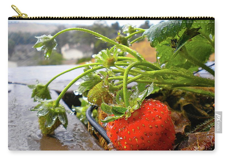 Strawberries Carry-all Pouch featuring the photograph Strawberries And Rain by Bridgette Gomes