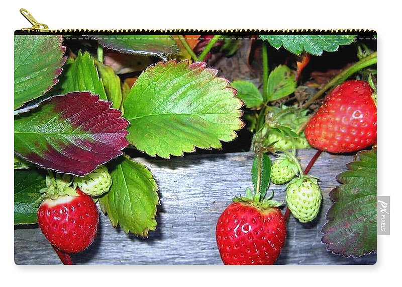 Strawberries Carry-all Pouch featuring the photograph Strawberries by Will Borden