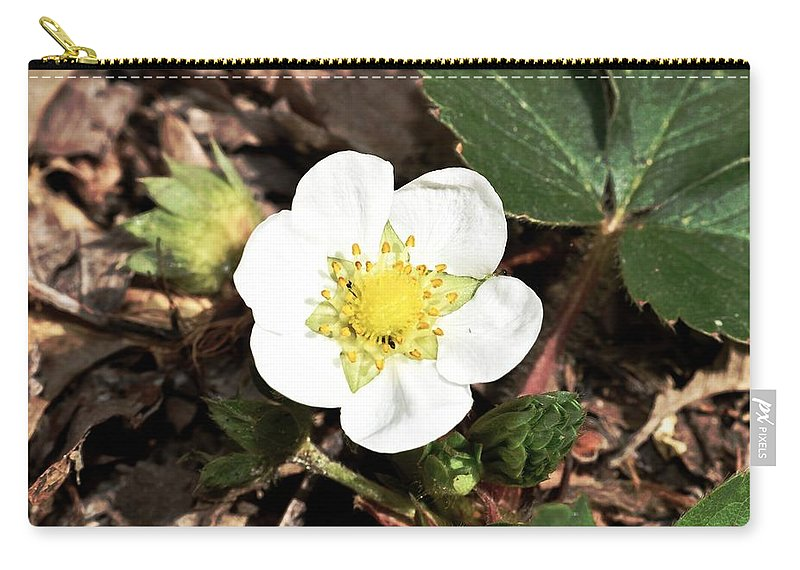 Strawberry Carry-all Pouch featuring the photograph Strawberry Flower 1 by Galen Puronen