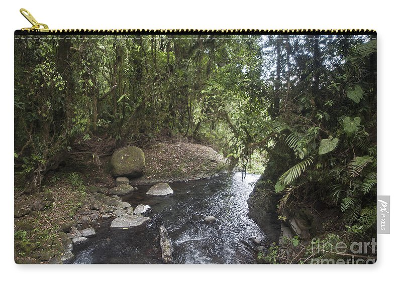 Stream Carry-all Pouch featuring the photograph Stream In Rainforest by Madeline Ellis