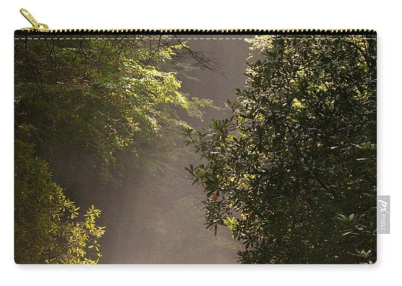 Blueridge Carry-all Pouch featuring the photograph Stream Light by Steve Gadomski