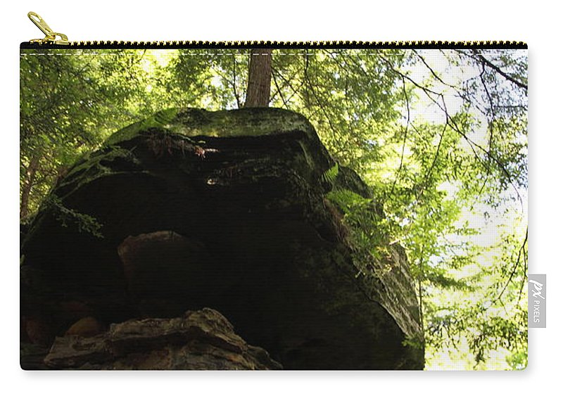 Tree Carry-all Pouch featuring the photograph Strength by Amanda Barcon