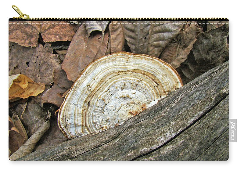 Shelf Carry-all Pouch featuring the photograph Striped Shelf Fungus - Basidiomycota by Mother Nature