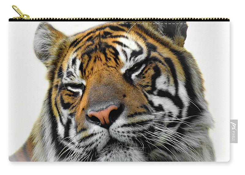 Nature Carry-all Pouch featuring the photograph Stripes, No. 28 by Elie Wolf