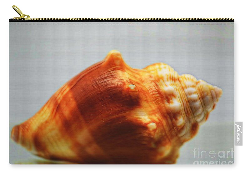 Strombus Alatus Carry-all Pouch featuring the photograph Strombus Alatus by Patti Whitten