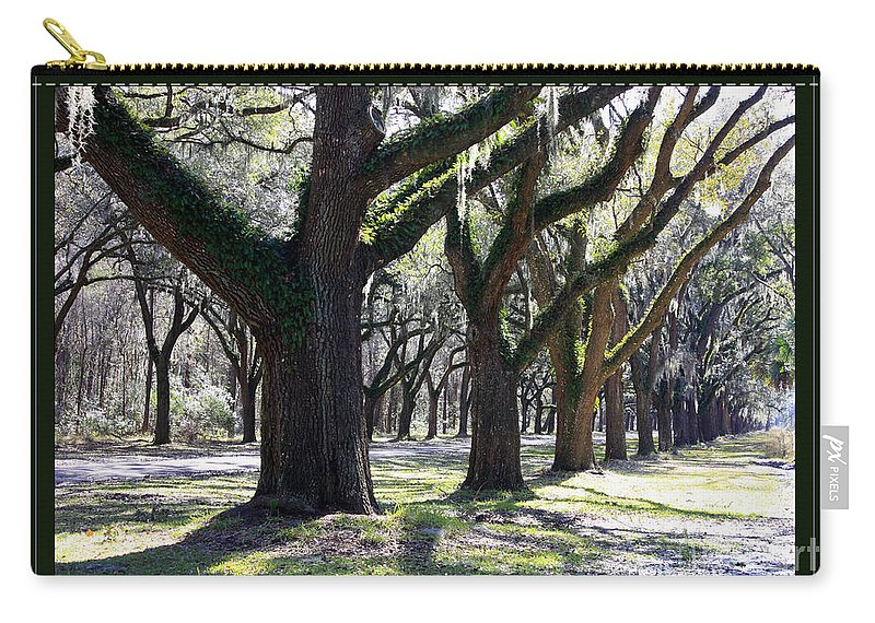 Landscape Carry-all Pouch featuring the photograph Strong And Proud In The South With Border by Carol Groenen
