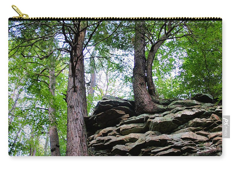 Trees Carry-all Pouch featuring the photograph Strong Roots by Kristin Elmquist