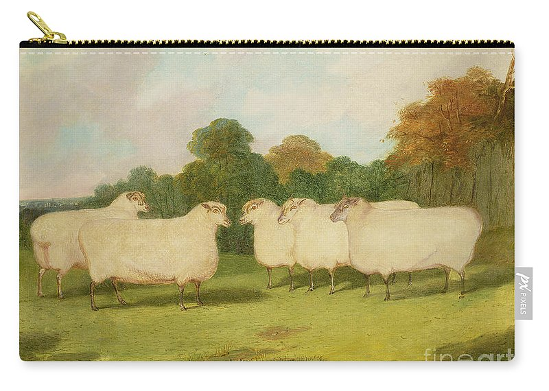 Study Carry-all Pouch featuring the painting Study Of Sheep In A Landscape  by Richard Whitford