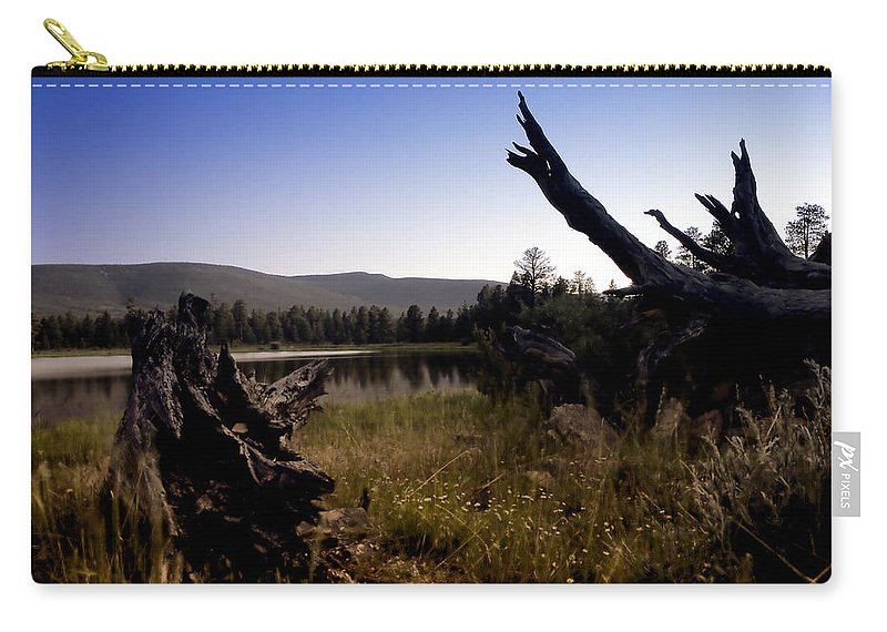 Nature Carry-all Pouch featuring the photograph Stumped By The Lake by John K Sampson