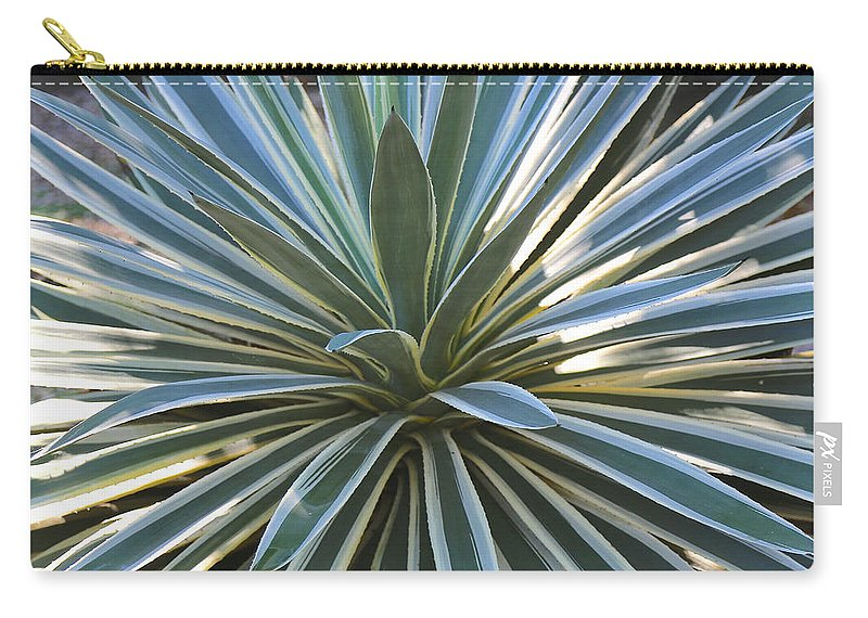 Agave Carry-all Pouch featuring the photograph Stunning Agave Plant by Carol Groenen