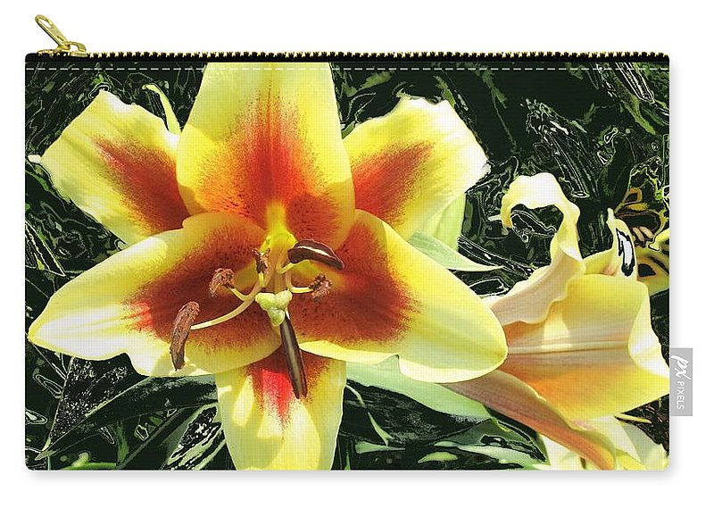Flower Carry-all Pouch featuring the photograph Subtle Beauty by Ian MacDonald