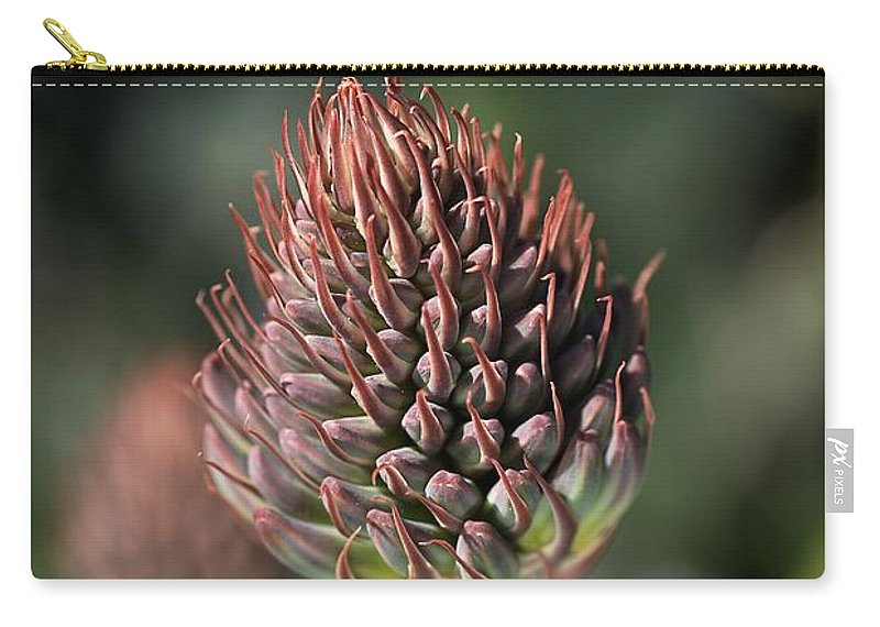 Plant Carry-all Pouch featuring the photograph Succulent Bud by Joy Watson