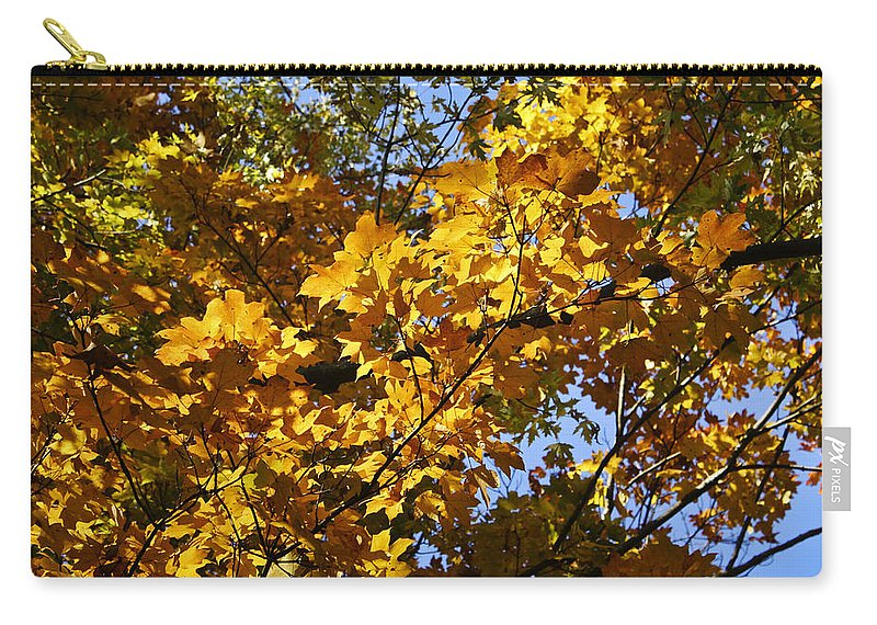 Sugar Carry-all Pouch featuring the photograph Sugar Maple by Teresa Mucha