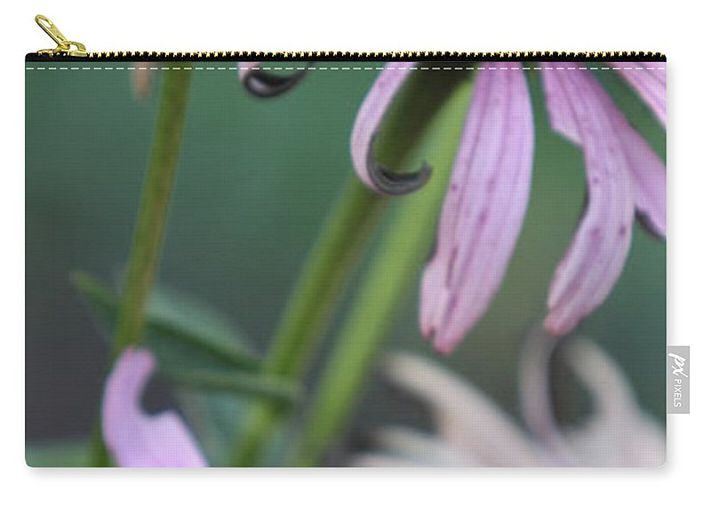Echinacea Carry-all Pouch featuring the photograph Summer by Amanda Barcon