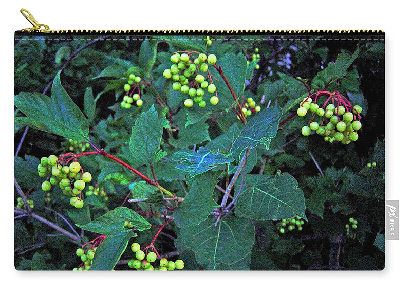 Hi Bush Cranberries And Leaves Carry-all Pouch featuring the photograph Summer Berries by Joanne Smoley