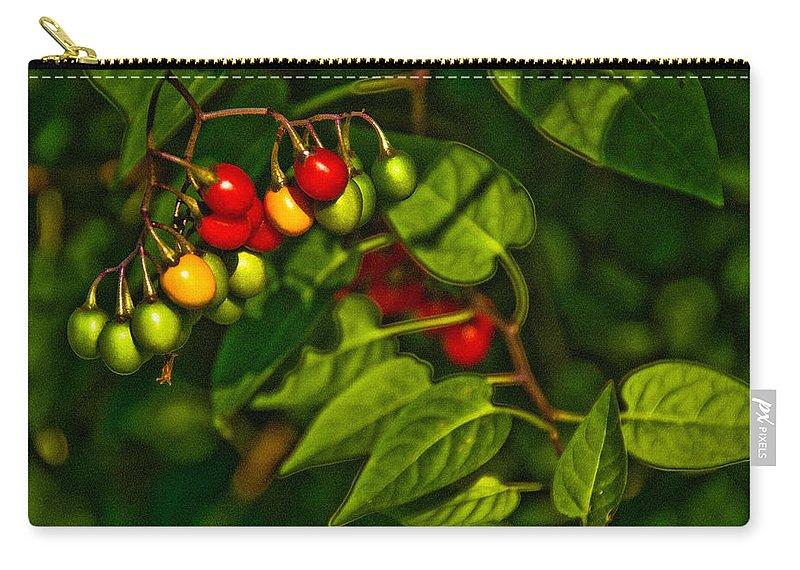 Berries Carry-all Pouch featuring the photograph Summer Berries by Onyonet Photo Studios