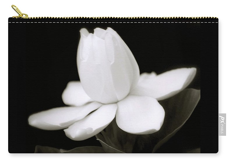 Flower Carry-all Pouch featuring the photograph Summer Fragrance by Holly Kempe