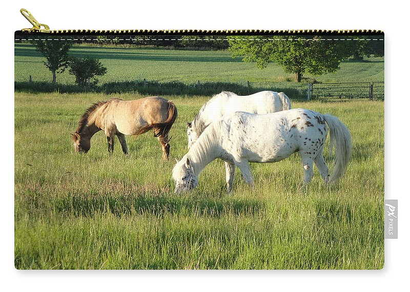 Pony Carry-all Pouch featuring the photograph Summer Grazing by Susan Baker