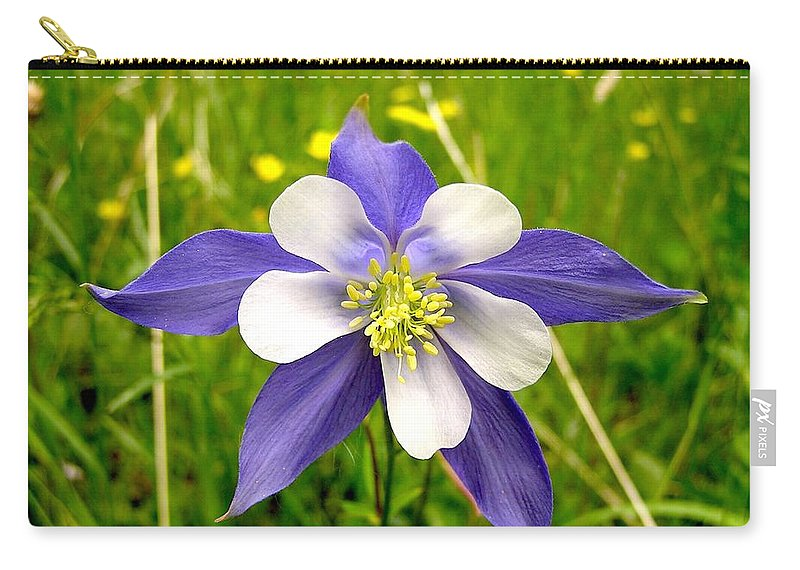 Plant Carry-all Pouch featuring the photograph Summer In The Rockies by Carol Milisen