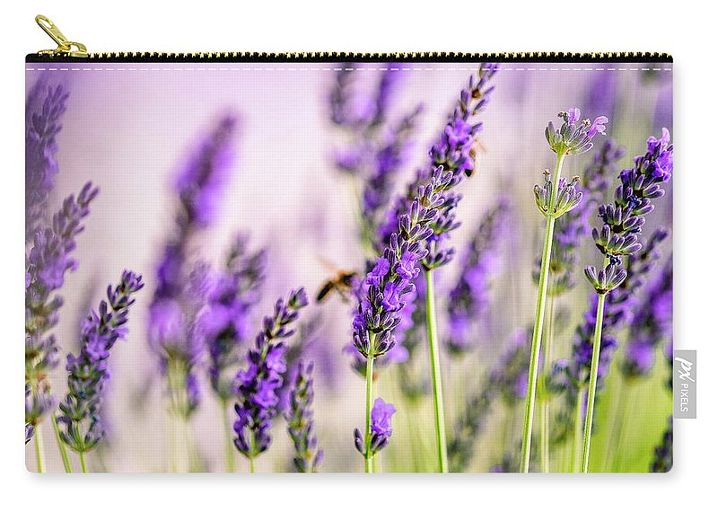 Lavender Carry-all Pouch featuring the photograph Summer Lavender by Nailia Schwarz