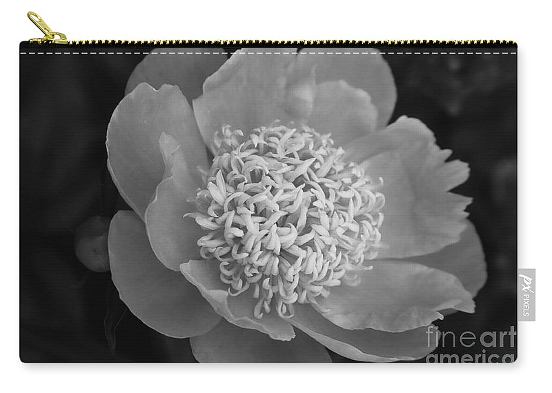 Peony Carry-all Pouch featuring the photograph Summer Peony by Kathy McClure