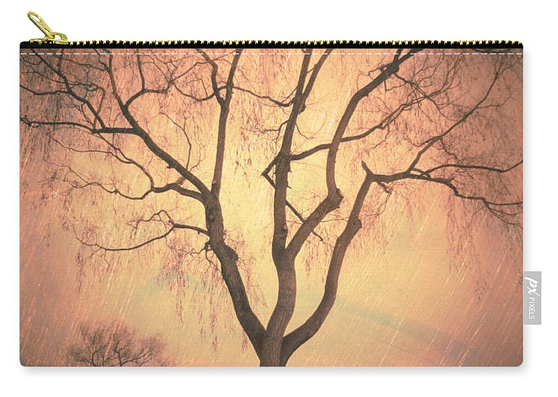 Summerland Carry-all Pouch featuring the photograph Summerland Light In Winter by Tara Turner