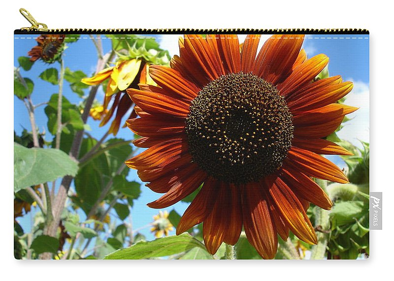 Sunflower Carry-all Pouch featuring the photograph Summers Here by Susan Baker