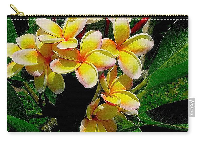 Summertime In Hawaii Carry-all Pouch featuring the photograph Summertime In Hawaii by James Temple